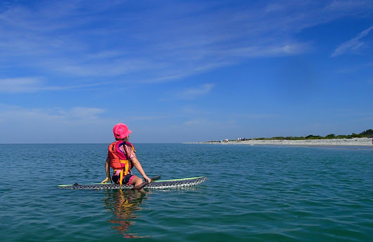 Explore the Great Calusa Blueway Paddling Trail - Sun Palace Vacation Homes