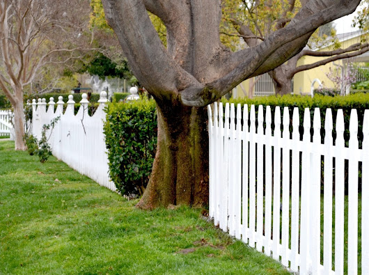 Garden Fencing Ideas | The Cutting Edge Landscape