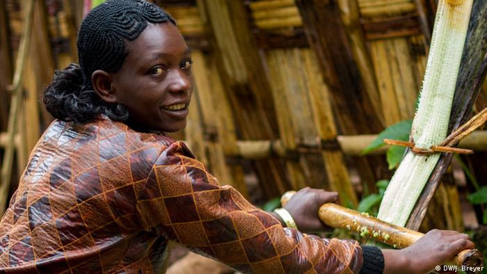 A woman is preparing false banana leaves (Ensete) for fermentation