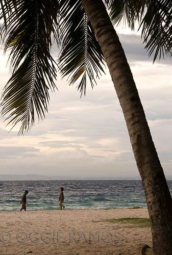 Samal - Kaputian Palm & Kids Silhouettes