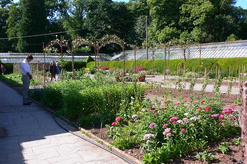 The kitchen garden at Tyntesfield