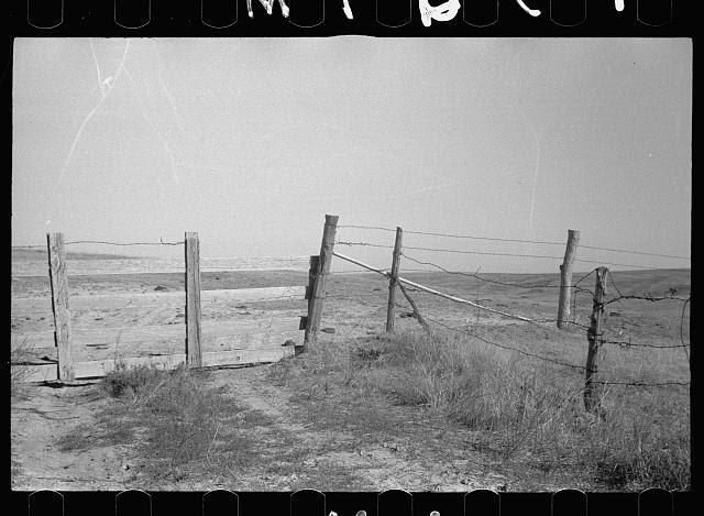 Cattle gate, Dawson County, Nebraska