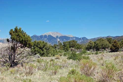 mountain over sagebrush.jpg