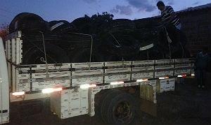 PF desconfiou de movimentação de caminhões e caminhonetes no local