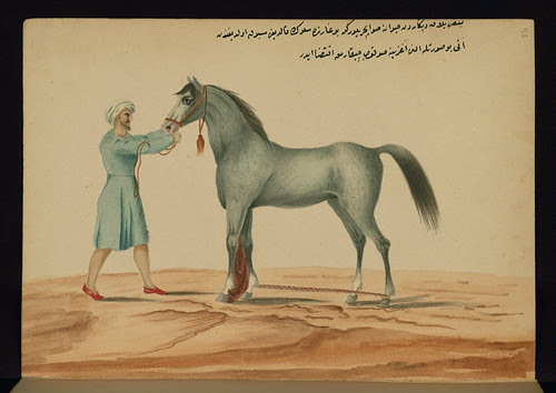 Book on horses, Removing a leech from a horse's mouth, Walters Art Museum Ms. W.661, fol. 75a