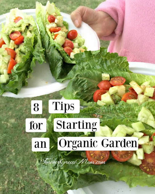 8 Tips for Starting an Organic Garden | Forever Green Mom