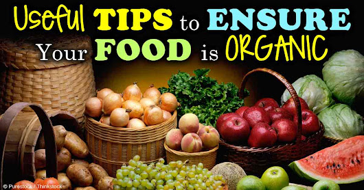 Roundup in Food: Are You Eating This Toxic Contaminant?