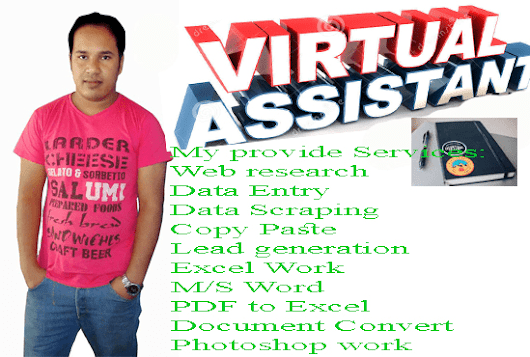 I will be virtual assistant pro