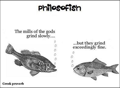 philosofish 4 small