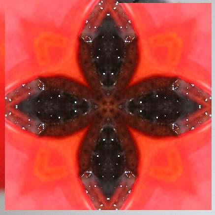 Kaleidoscopic Hip
