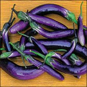 http://www.reimerseeds.com/images/products/eggplant/Ping_Tung_Long_Eggplants_Seeds.jpg