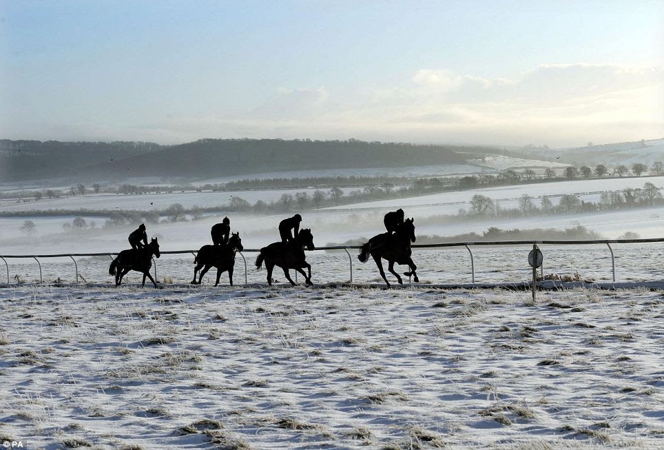 Race horses are exercised on the snowy gallops in Malton, North Yorkshire, England