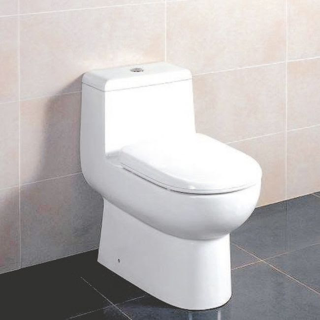 A WaterSense toilet must use no more than 4.8 lites for a single-flush toilet and six litres for the higher volume flush and 4.1 litres for the lower volume flush for a dual-flush toilet.