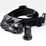 D.T. Systems Bark Boss Rechargeable No Bark Collar