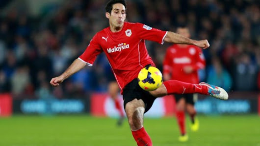 Cardiff City: Bluebirds star sets sights on survival - Dafa Sports