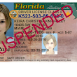 Driving While License Revoked (DWLR) in Florida – Chances of Getting Your License Back