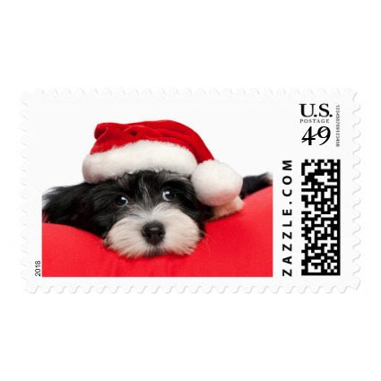 Cute Christmas Havanese Puppy Dog Postage Stamps