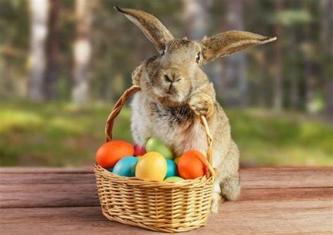 Made in USA Easter Treats: Tell the Easter Bunny to Buy