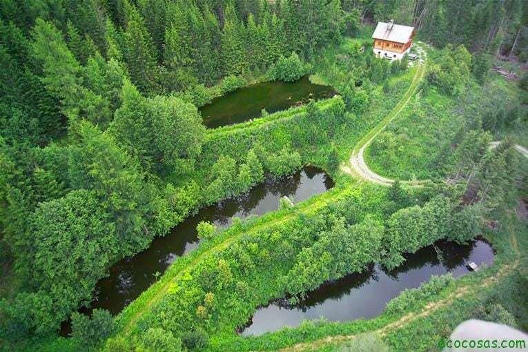 FlugbilderKrameterhof Sepp Holzer: El rebelde agrario (Documental)
