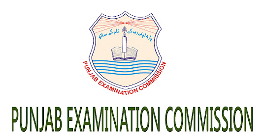 PEC 8th Class Result 2015 All Punjab Districts