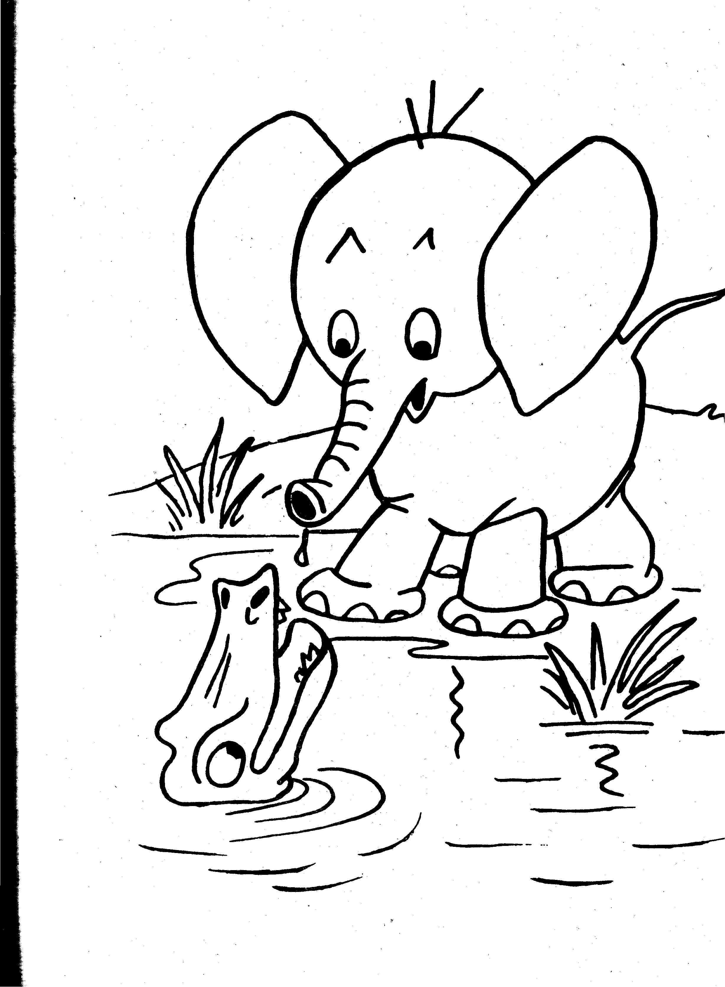 Printable Realistic Animal Coloring Pages at GetColorings ...