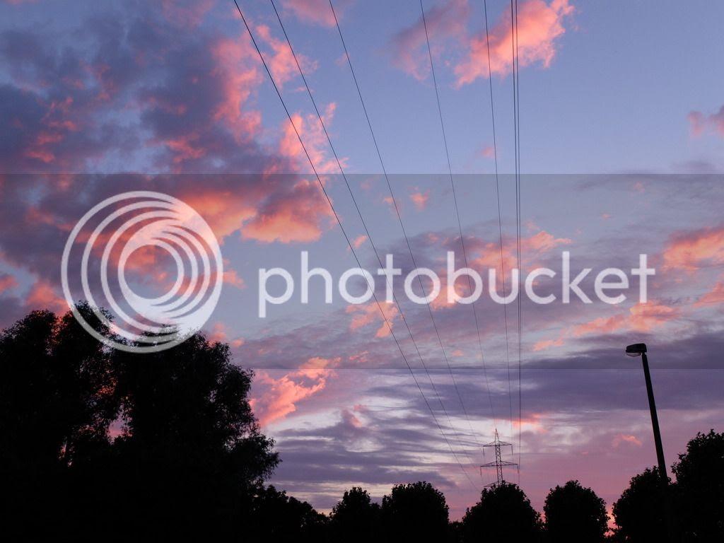 Modest Mix purple summer sky