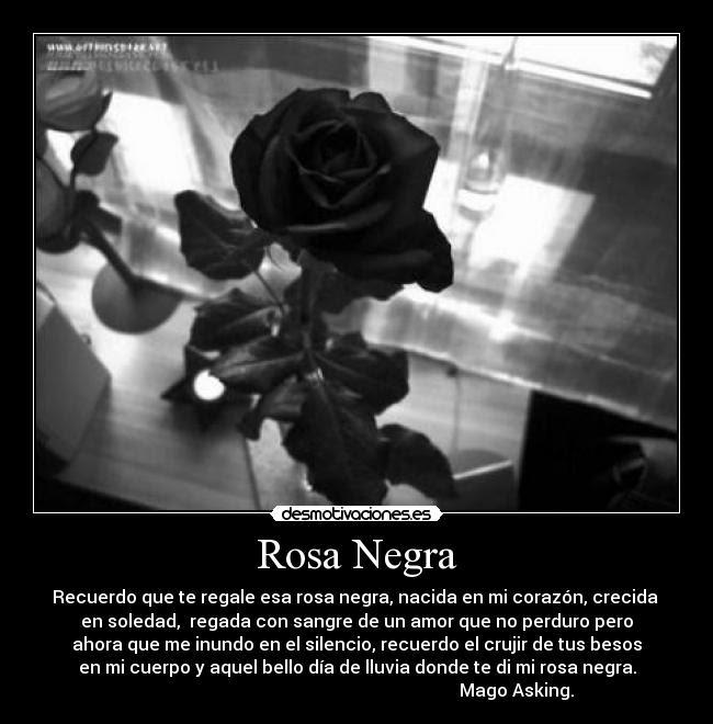 Rosa Negra Desmotivaciones