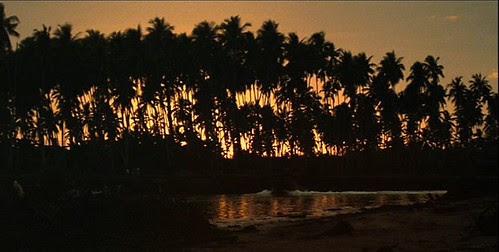 Apoc Now Jungle 2 dawn