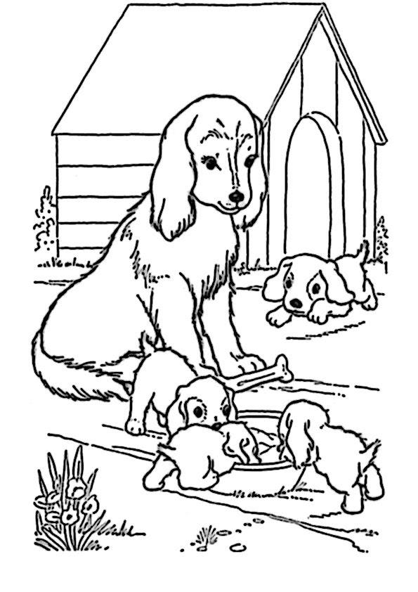 Ausmalbilder Kinder Hunde 14 Ausmalbilder Fur Kinder