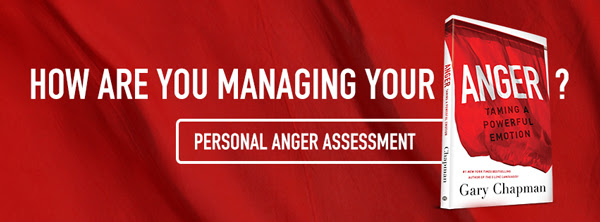 Personal Anger Assessment The 5 Love Languages