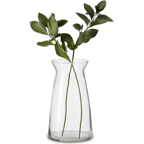 Google Express Cinch Vase 9 Libbey Vase
