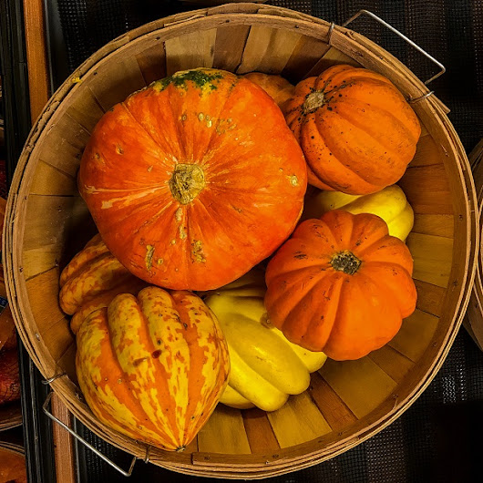 How to Store Your Fall Harvest for Winter!