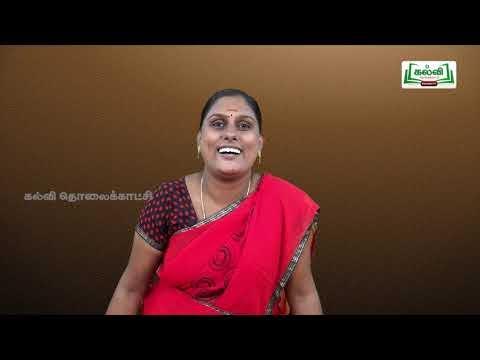 3rd Social Science Bridge Course குடும்பம்  நாள் 1&2  Kalvi TV