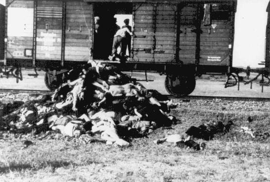 Along the route from Iasi to either Calarasi or Podul IIoaei, Romanians remove corpses from a train carrying Jews deported from Iasi following a pogrom. Romania, late June or early July 1941.