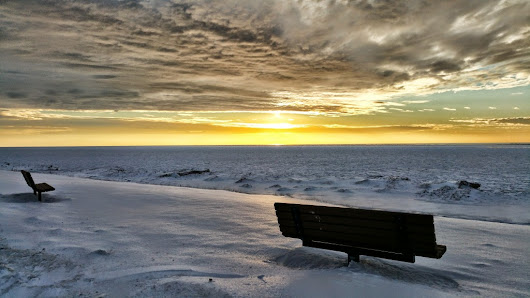 Bench Overlooking Lake Michigan Winter Southwest MI