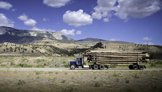 Slowing wood demand reduces global trade of lumber