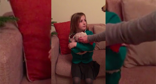 Mom Takes Away This Girl's Stuffed Puppy and Gives Her Something Better