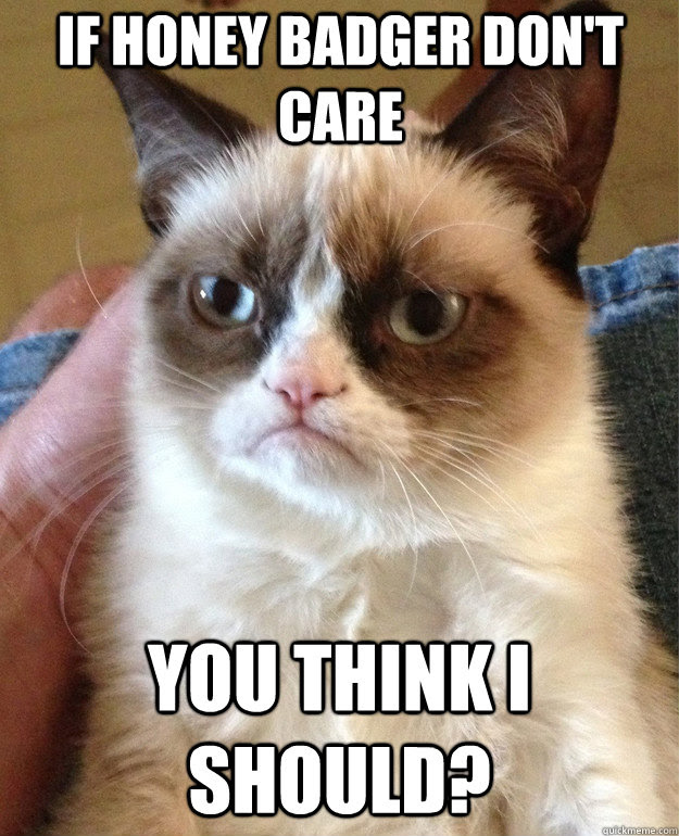 If Honey Badger Dont Care You Think I Should Grumpy Cat Quickmeme