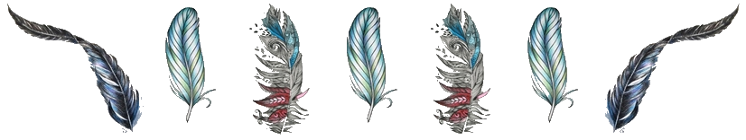 feather-detail-horz
