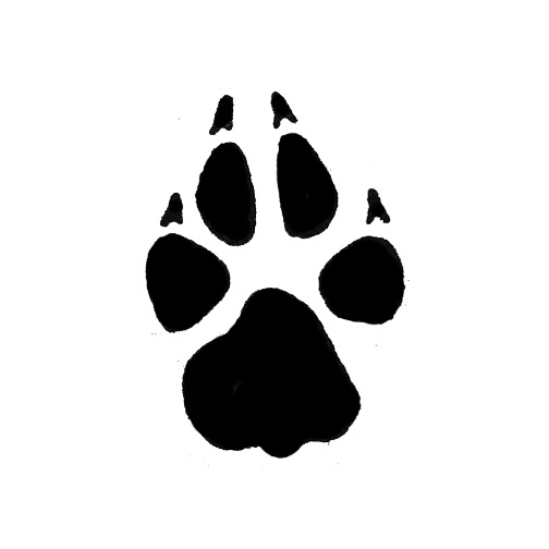 Download Paw svg, Download Paw svg for free 2019