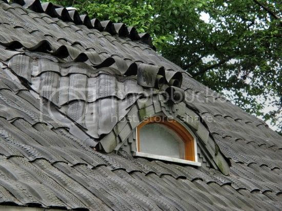 Tire Roof
