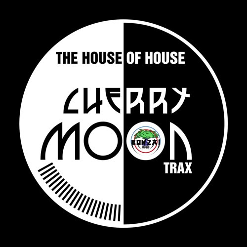 Cherry Moon Trax vs. Chris Liebing - The House Of House (Max Aristid Audio07a Rework | Dandu Groove) by Max Aristid