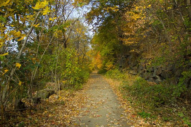 Hike_Cold_Spring_2.jpg