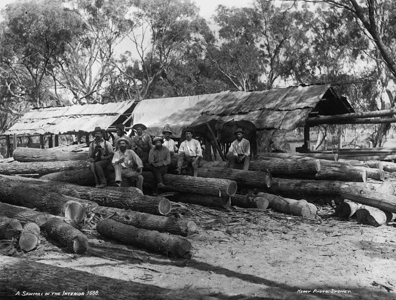 File:A sawmill in the interior from The Powerhouse Museum Collection.jpg