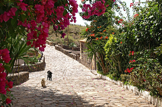 Discovering San Miguel de Abona in south Tenerife |