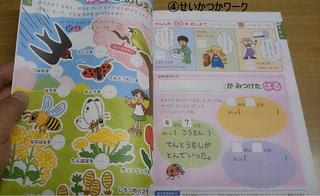 syo1-教材生活科ワーク.JPG