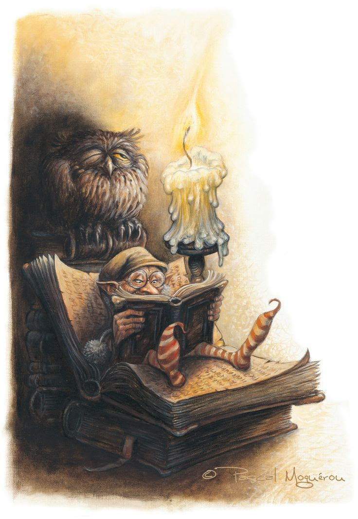 What reads the gnome? by Pascal Moguerou