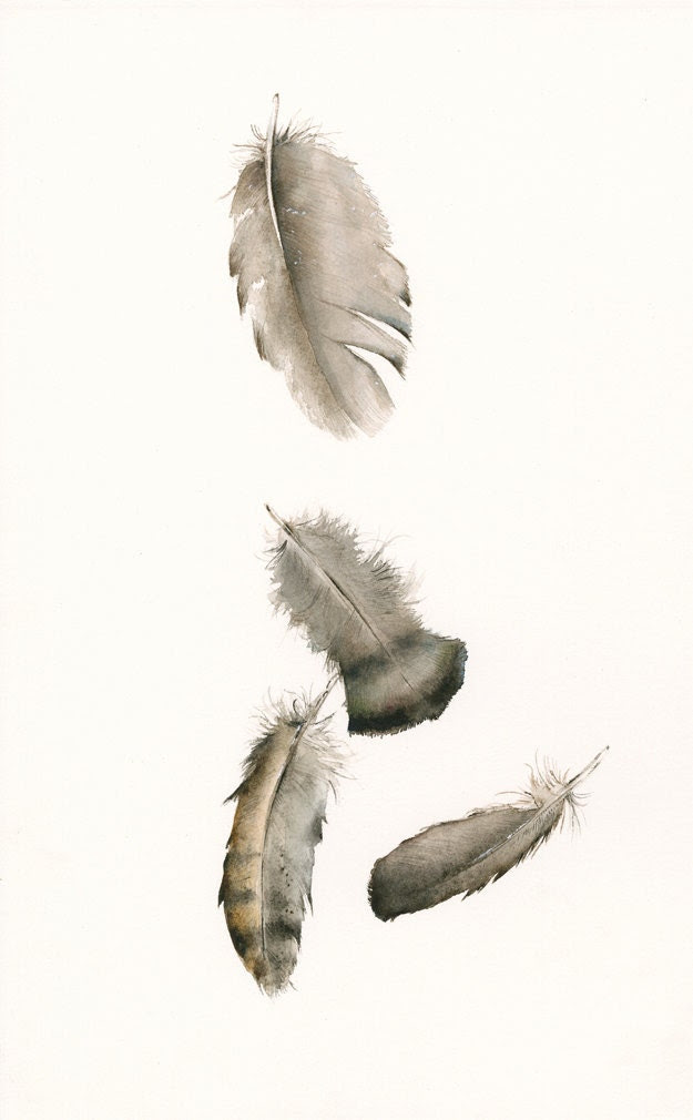 feather art,Turkey Feathers No. 2 Archival print - amberalexander