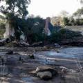 25 california mudslide 0110