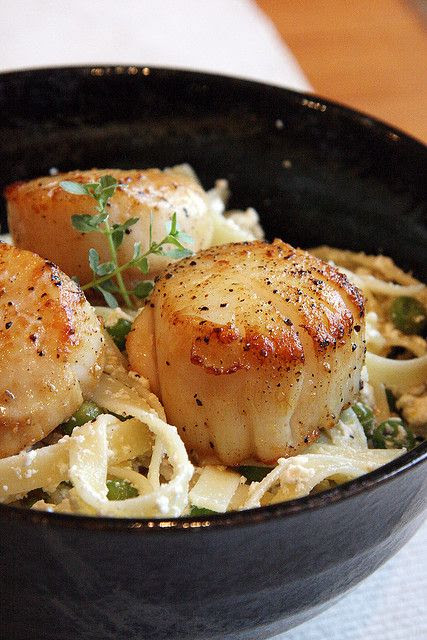 Lemon Ricotta Pasta with seared Sea Scallops.  Fresh thyme and ricotta...delicious. All that's missing is a bottle of Pinot Grigio!